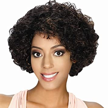 Amazon.com : Zury SIS Remy Human Hair Wig