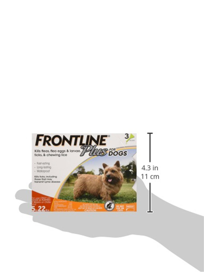 Frontline Plus for Dogs Small Dog (5-22 pounds) Flea and Tick Treatment, 3 Doses by Frontline