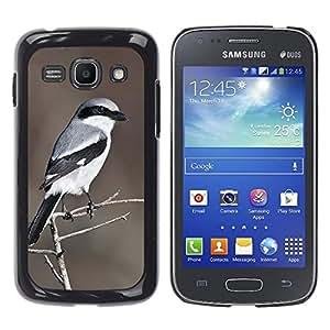 YOYOYO Smartphone Protección Defender Duro Negro Funda Imagen Diseño Carcasa Tapa Case Skin Cover Para Samsung Galaxy Ace 3 GT-S7270 GT-S7275 GT-S7272 - pájaro blanco marrón modelo pluma gris