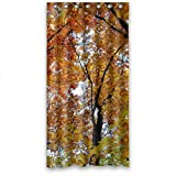 img - for Red Yellow Green Tree Leaves Waterproof Shower Curtain 36
