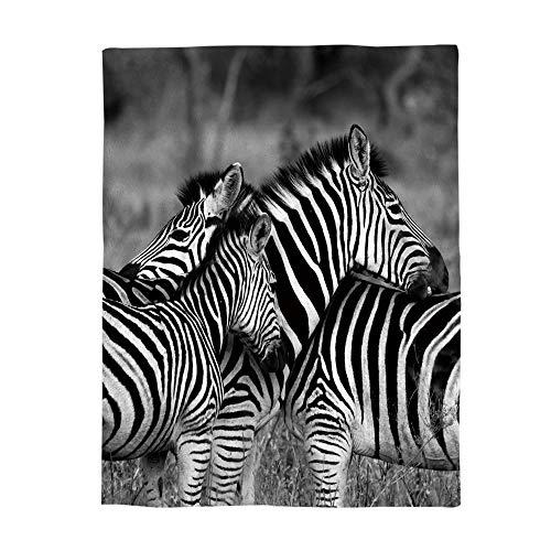 - Decorfine Comfy Plush Fleece Throw Blanket 39x49inch Wildlife Animal Zebras Safari Wild Nature Picture Print Soft Coach Blanket Lightweight Stadium Blanket
