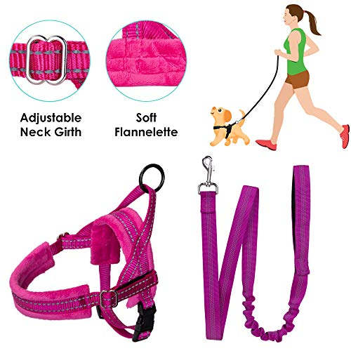 SlowTon No Pull Small Dog Harness and Leash, Heavy Duty Easy Walk Vest Harness Soft Padded Reflective Adjustable Puppy Harness Anti-Twist 8FT Pet Lead Quick Fit Lightweight for Small Dog ()