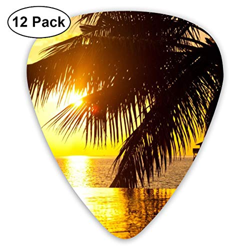 (HAIDILUN Tahiti Summer Sunset of Beach Guitar Picks Plectrums Acoustic Guitar Ukulele Picks 0.46 Mm, 0.73mm, 0.96 Mm,12 Pack)