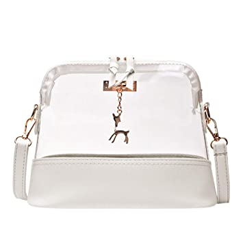 631d191ae18e Transparent Crossbody Bag Clear Crossbody Purse for Women & Girls ...