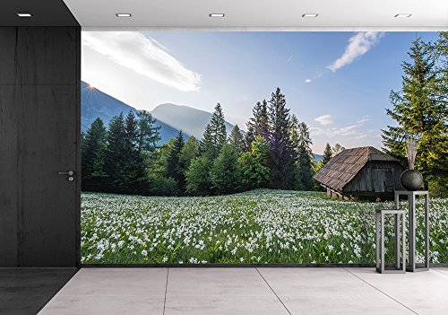 Wood Hut with Flowers Surrounded with Beautiful Nature Scenery