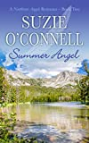 Summer Angel (Northstar Romances Book 2) Pdf