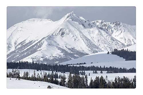 Tree26 Indoor Floor Rug/Mat (23.6 x 15.7 Inch) - Electric Peak Mountains Gallatin Range Snow