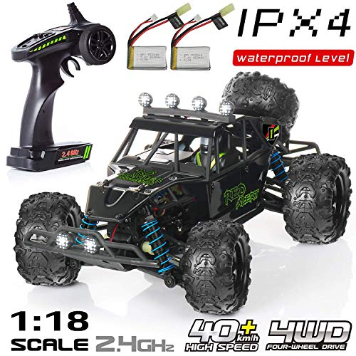 Exercise N Play RC Car, Remote Control Car, Terrain RC Cars, Electric Remote Control Off Road Monster Truck, 1:18 Scale 2.4Ghz Radio 4WD Fast 30+ MPH RC Car, with 2 Rechargeable Batteries (Best Electric Rc Cars)