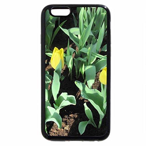 iPhone 6S / iPhone 6 Case (Black) Gardener creativity 48