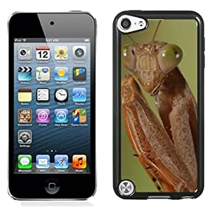 Fashionable Designed Cover Case For iPod 5 Touch With Mantis Animal Mobile Wallpaper 1 Phone Case