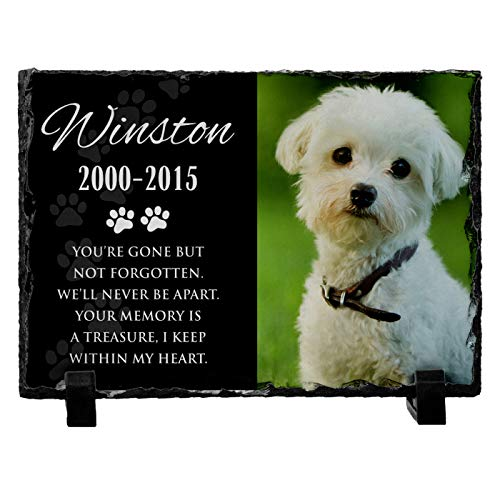 Personalized Pet Memorial Stone with Photo for Dog Cat or Pets Name Dates - Matte & Glossy Options - UV & Water Proof Indoor Outdoor Garden Grave Marker and Desktop Photo Frame - D6 6