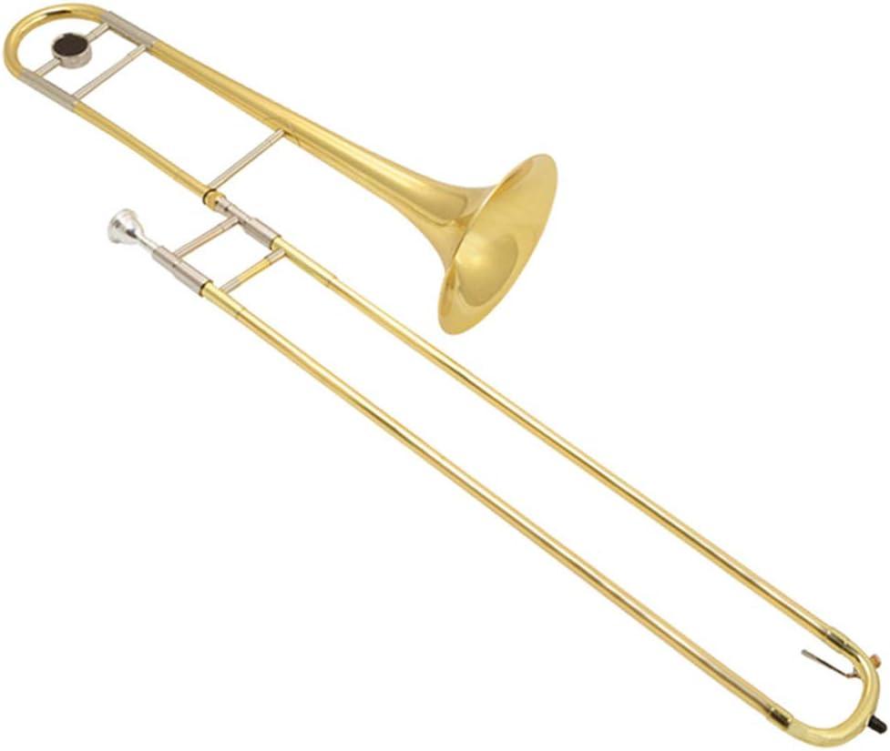 AYYNAM Trombón Latón Oro Laca BB Trombón Tenor para Principiantes Y Actuaciones Instrumento De Viento con Estuche Rígido: Amazon.es: Deportes y aire libre