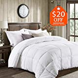 Basic Beyond All-Season Goose Down Comforter (Queen) - Premium Down Duvet Insert with Hypoallergenic Down Proof Cotton Shell