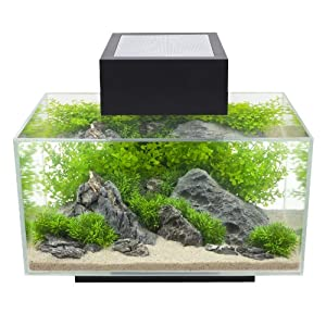 amazon   fluval edge 6 gallon aquarium with 21 led light black fish tanks and aquariums
