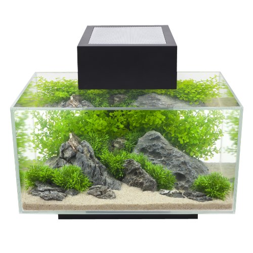 - Fluval Edge 6-Gallon Aquarium with 21-LED Light, Black