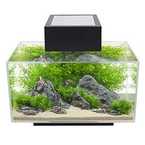 Fluval edge 6 gallon aquarium with 21 led for Aquarium boule 20 litres