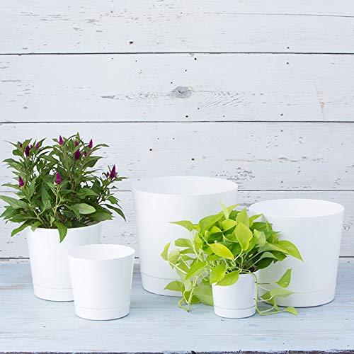 Full Depth Round Cylinder Pot, White, 10-Inch