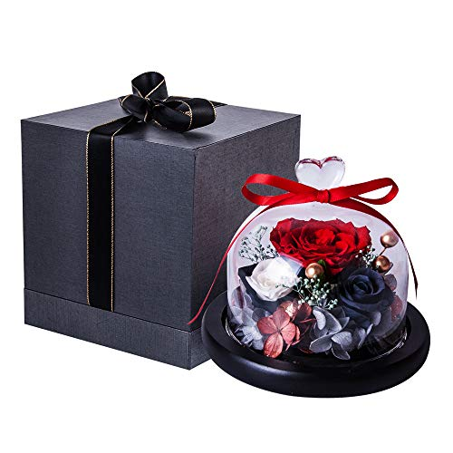 Eternal Rose- Preserved Flower Rose Handmade Fresh Flower Rose with Beautiful Creative Heart Design a Gift for Valentine's Day Mother's Day Christmas Anniversary Birthday Thanksgiving Girls(Red) (Presents Day Valintines)