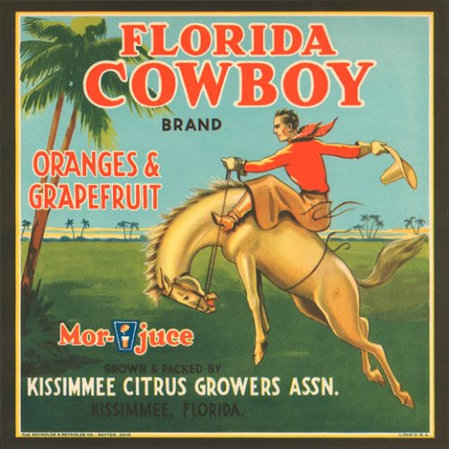 FLORIDA COWBOY ORANGES GRAPEFRUIT JUICE USA FRUIT CRATE LABEL PRINT REPRODUCTION
