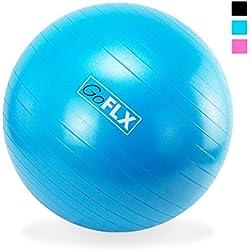 GoFLX Birthing Stability Ball with Pump