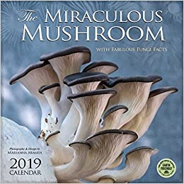 the miraculous mushroom 2019 wall calendar with fabulous fungi facts
