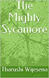 The Mighty Sycamore