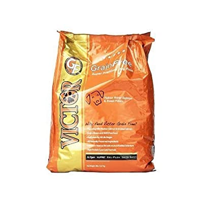 Victor Yukon River Salmon & Sweet Potato Grain-Free Dry Dog Food, 5-Pound by Victor Dog Food