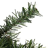 """Northlight 18"""" Canadian Pine Artificial Christmas"""