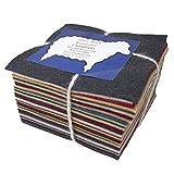 30 5'' Squares 100% Wool Felt Americana Colors Charm Pack