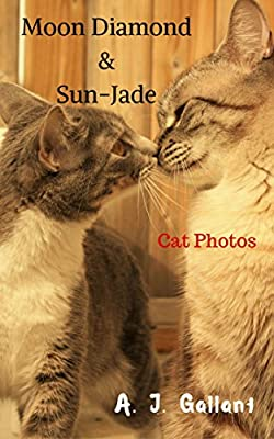 Cat People: Moon Diamond and Sun-Jade