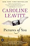 Pictures of You by Caroline Leavitt (2011-01-25)