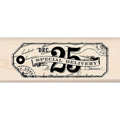 Inkadinkado Wood Stamp, Special Delivery Tag