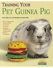 Training Your Guinea Pig
