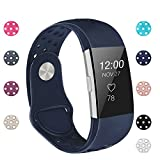 POY Replacement Bands Compatible for Fitbit Charge 2, Adjustable Breathable Wristbands with Air Holes Straps, Large Blue