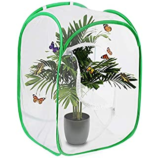 Scotamalone Collapsible Butterfly Habitat Garden Cage Butterfly Cage Butterfly House Insect Net Terrarium Net Pop-up 23.6 Inches Tall White Green Kids Butterfly Net for Watching Butterfly Life Cycle