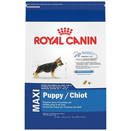 ROYAL CANIN SIZE HEALTH NUTRITION MAXI Puppy dry dog food, 35-Pound