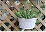 Mr. Garden Resin Plastic Wall Hanging planter Vertical Garden Plant Pot, 12x6.9x8.6Inch, Light Grey, 2Pack