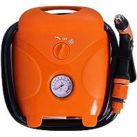 High Pressure Cleaner - Household/Commercial High Pressure Water Gun, Powerful Compact/Full Control Car Wash Pump,12v/220V,60W,80Bar,Car+home
