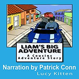 Liam's Big Adventure Audiobook