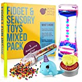 Fidget Toys Mix Pack - Mixed Pack of 5 Fiddle Sensory Toys for Stress Relief Includes Liquid Motion Timer, Slow Rising Squishy Toy, Color Changing Therapy Putty for Kids, Stretchy Noodle, Water Beads