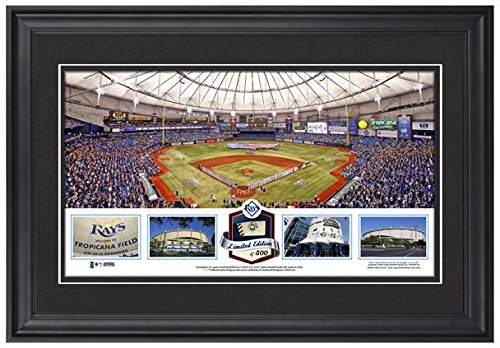 tropicana-field-tampa-bay-rays-framed-stadium-panoramic-with-game-used-ball-limited-edition-of-500-m
