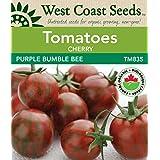Tomato Seeds - Purple Bumble Bee Certified Organic (10 seeds)