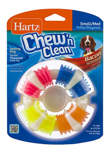 Ring Dog Chew - Hartz Chew 'n Clean Bacon Scented Dental Teething Ring Dog Chew Toy - Small/Medium