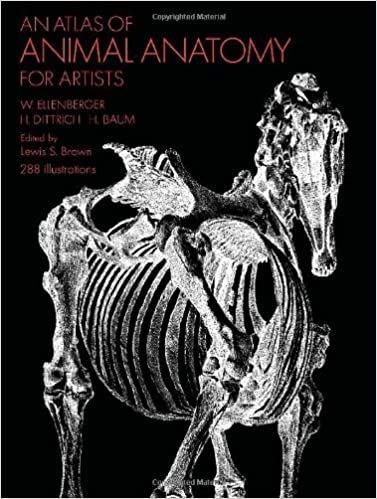 Download e books an atlas of animal anatomy for artists dover dover anatomy for artists pdf highly suggested as one of many only a few books at the topic precious of getting used an an authoritative guide fandeluxe Choice Image