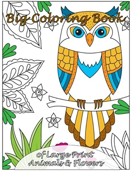- Big Coloring Book Of Large Print Animals & Flowers (Premium Adult Coloring  Books) (Volume 31): Coloring Books, Lilt Kids: 9781979391238: Amazon.com:  Books
