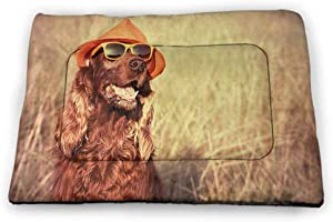 Extra Large Pet Mat Bed Animal for Food and Water for Wood Floors Funny Retro Irish Setter Dog Wearing Hat and Sunglasses Humorous Joyful Picture 52