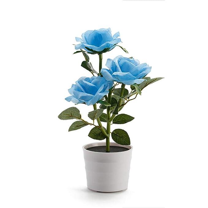 Amazon.com: Luz de flor de rosas solares impermeables – Flor ...