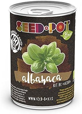 SeedBox PGPTBAG Lata de Cultivo albahaca genovesa Bio, 0.7x0.7x9 ...