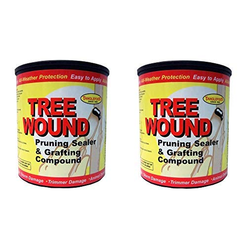 Ortho Tanglefoot Tree Wound Pruning Sealer & Grafting Compound 16 OZ - 2 Pack ()