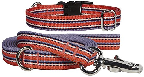 Waggo Line Up Collar & Leash Set - 2 pk.